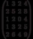 $$\begin{pmatrix}1&3&2&4\\2&5&2&8\\1&2&0&4\\1&3&2&5\\2&6&4&9\end{pmatrix}$$