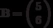\mathbf{B}=\left( \begin{array}{c}5 \\6 \end{array} \right)