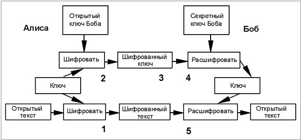 НОУ ИНТУИТ | Лекция