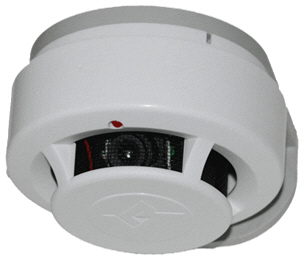 Камуфлированная видеокамера RVi-13